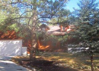 Casa en Remate en Larkspur 80118 TENDERFOOT DR - Identificador: 4309310402