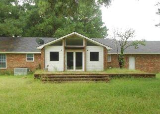 Casa en Remate en Eastover 29044 DODAMEAD ST - Identificador: 4309972172