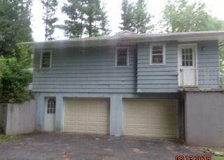 Casa en Remate en South Fallsburg 12779 LAKELAND DR - Identificador: 4310441245