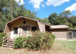 Casa en Remate en Ocklawaha 32179 SE 169TH CT - Identificador: 4311470938