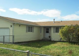 Casa en Remate en Kettle Falls 99141 S OAK ST - Identificador: 4313223706