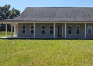 Casa en Remate en Mayo 32066 SW COUNTY ROAD 320 - Identificador: 4313748840