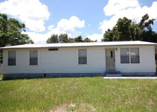 Casa en Remate en Summerfield 34491 SE 91ST TER - Identificador: 4314062872