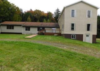 Casa en Remate en Parksville 12768 SPRUCE LN - Identificador: 4316276376