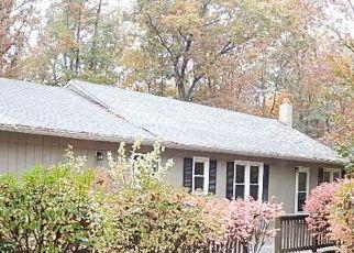 Casa en Remate en Mineral 23117 CARPENTER LN - Identificador: 4323207763