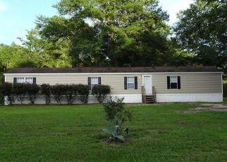 Casa en Remate en Holt 32564 TEE DON CT - Identificador: 4324811176