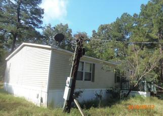 Casa en Remate en Wedgefield 29168 PALM SPRINGS DR - Identificador: 4325934579