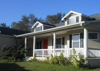 Casa en Remate en Labelle 33935 S SWINGING TRL - Identificador: 4341127910