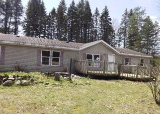 Casa en Remate en Boyne Falls 49713 SKOP RD - Identificador: 4344276498