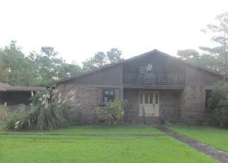 Casa en Remate en Stacy 28581 STACY LOOP RD - Identificador: 4345473931