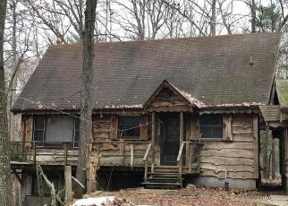 Casa en Remate en Irons 49644 N CARIBOU TRL - Identificador: 4347981312