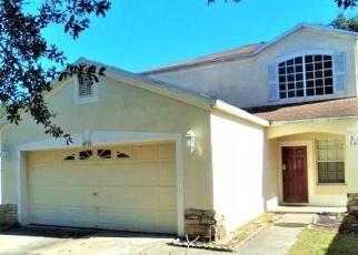 Casa en Remate en Riverview 33578 QUARTER HORSE DR - Identificador: 4353066186