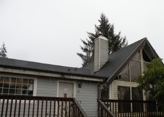 Casa en Remate en South Bend 98586 WILLIAMS CREEK RD - Identificador: 4368895900