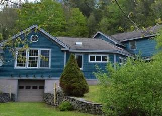 Casa en Remate en Long Eddy 12760 COUNTY HWY 28 - Identificador: 4373016794
