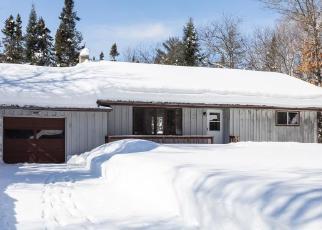 Casa en Remate en Land O Lakes 54540 LITTLE PORTAGE LAKE RD - Identificador: 4379714732