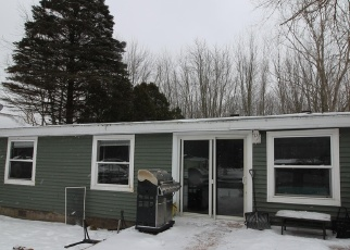 Casa en Remate en Wayland 49348 VISTA POINT DR - Identificador: 4383457209