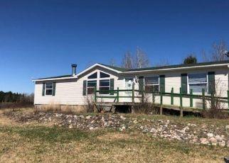 Casa en Remate en Cook 55723 LUND RD - Identificador: 4384761496