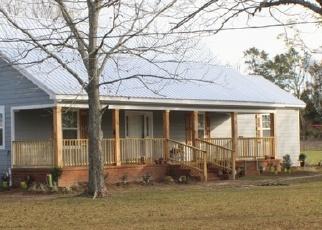 Casa en Remate en Black 36314 AUSTIN RD - Identificador: 4385432475