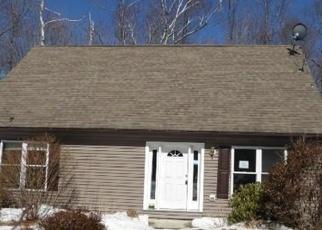 Casa en Remate en Williamsburg 01096 BALL RD - Identificador: 4396311301