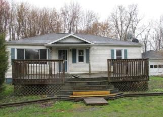 Casa en Remate en New Buffalo 49117 WILSON RD - Identificador: 4401262608