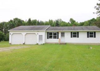Casa en Remate en Lapeer 48446 OREGON TRL - Identificador: 4405961186