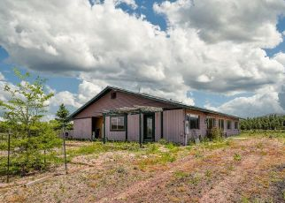 Casa en Remate en Parks Community Post Office 86018 E SPRING VALLEY RD - Identificador: 4411686383