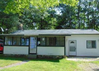 Casa en Remate en Greenbush 48738 E CEDAR LAKE DR - Identificador: 4411798508