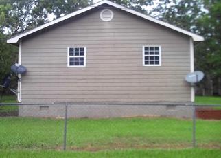 Casa en Remate en Meigs 31765 CABIN ST - Identificador: 4412099393
