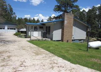 Casa en Remate en Custer 57730 LEISENGER LN - Identificador: 4415273840