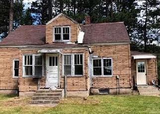 Casa en Remate en Orr 55771 ORR BUYCK RD - Identificador: 4421353796