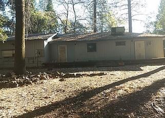 Casa en Remate en Forest Ranch 95942 CHATEAU WAY - Identificador: 4424348209