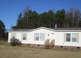Casa en Remate en Lumber Bridge 28357 SUMMER HILL RD - Identificador: 4424661814