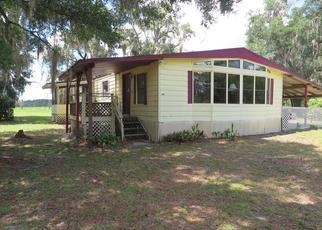 Casa en Remate en Georgetown 32139 SABAL PALM DR - Identificador: 4443745648