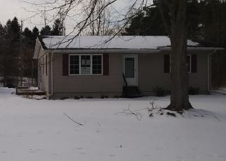 Casa en Remate en Mayville 48744 MERTZ RD - Identificador: 4444773120