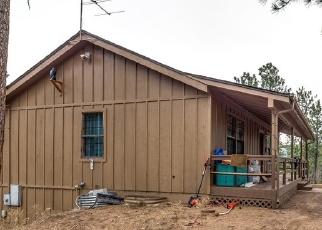Casa en Remate en Sedalia 80135 HILL DR - Identificador: 4446561827