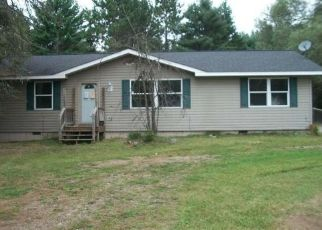 Casa en Remate en Eagle River 54521 ILLINOIS RD - Identificador: 4455593721