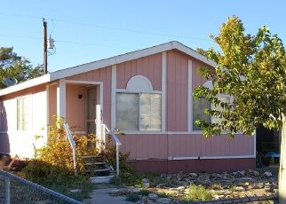 Casa en Remate en Beatty 89003 W HOYT ST - Identificador: 4455711985