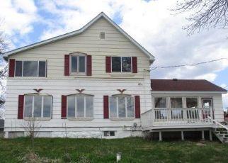 Casa en Remate en Rush City 55069 RUSH LAKE TRL - Identificador: 4457658325