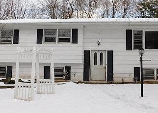 Casa en Remate en Grahamsville 12740 HILLTOP RD - Identificador: 4480913430