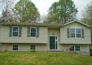 Casa en Remate en Winchester 22602 WITCH HAZEL TRL - Identificador: 4485214784