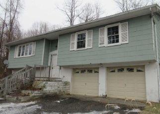 Casa en Remate en Wingdale 12594 SHELDON RD - Identificador: 4485564273