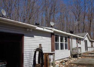 Casa en Remate en Cedarville 49719 N WINBERG RD - Identificador: 4487100248