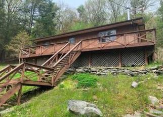 Casa en Remate en Pond Eddy 12770 HIGH RD - Identificador: 4491021436