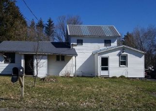 Casa en Remate en Munnsville 13409 STOCKBRIDGE HILL RD - Identificador: 4492050227