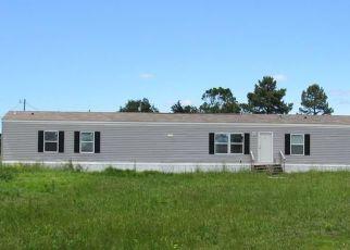 Casa en Remate en Mulberry 72947 RESTFUL DR - Identificador: 4495161608