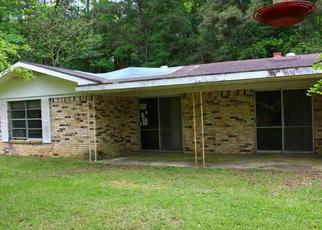 Casa en Remate en Woodville 75979 W HOLLY ST - Identificador: 4498290939
