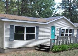 Casa en Remate en Grayling 49738 RUSTIC LN - Identificador: 4499521189