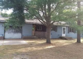 Casa en Remate en Baldwin 49304 W 32ND ST - Identificador: 4506348335