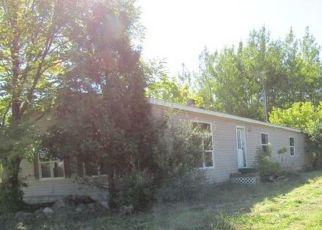 Casa en Remate en Twining 48766 N BRIGGS RD - Identificador: 4508382731