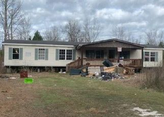 Casa en Remate en Smoaks 29481 HOPEWELL LN - Identificador: 4508560543